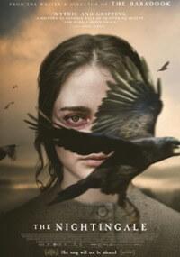 the nightingale cały film online